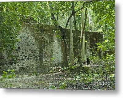 Rain Forest Jungle And Ruins At Calakmul Metal Print
