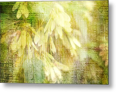 Rain On Leaves Metal Print by Suzanne Powers