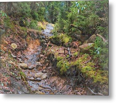 Rain Ruts Along The Appalachian Trail Metal Print by Philip White