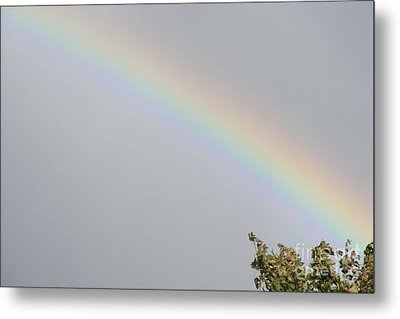 Metal Print featuring the photograph Rainbow After The Rain by Barbara Griffin