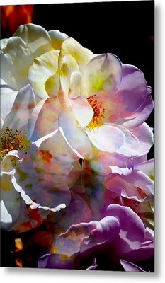 Rainbow Floral Metal Print by John Fish