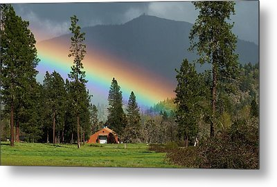 Metal Print featuring the photograph Rainbow Forest by Julia Hassett