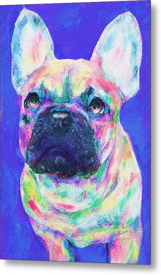 Metal Print featuring the digital art Rainbow French Bulldog by Jane Schnetlage