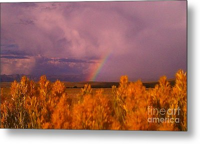 Rainbow In The Plains Metal Print by Chris Tarpening