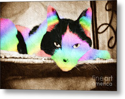 Rainbow Kitty Abstract Metal Print by Andee Design