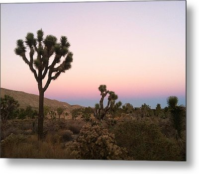 Metal Print featuring the photograph Rainbow Morning by Angela J Wright