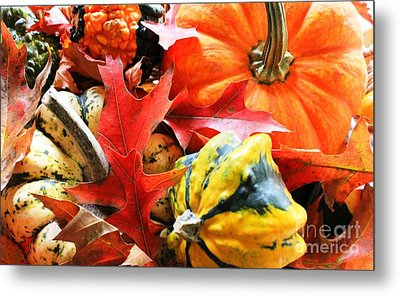 Rainbow Of Autumn Colors Metal Print