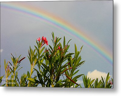 Rainbow Over Flower Metal Print by Augusta Stylianou