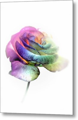 Rainbow Rose Metal Print by Marianna Mills