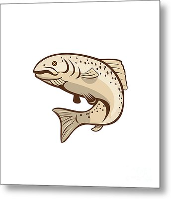 Rainbow Trout Jumping Cartoon  Metal Print by Aloysius Patrimonio