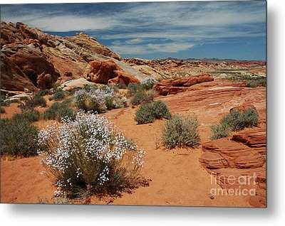 601p Rainbow Vista In The Valley Of Fire Metal Print by NightVisions