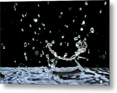 Raindrop Metal Print by Lisa Knechtel