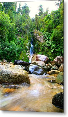 Metal Print featuring the photograph Rainforest Stream New Zealand by Amanda Stadther