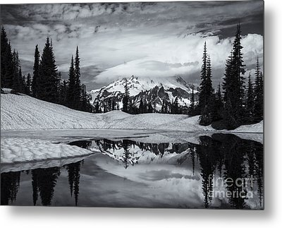 Rainier Reflections Metal Print by Mike  Dawson