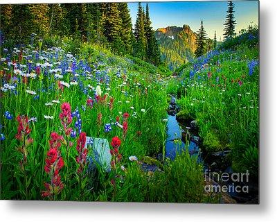 Rainier Wildflower Creek Metal Print