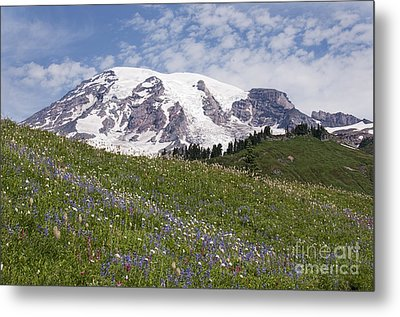 Rainier's Wildflowers Metal Print by Sharon Seaward