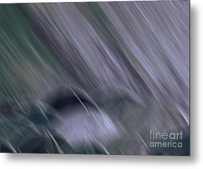 Rainy By Jrr Metal Print by First Star Art