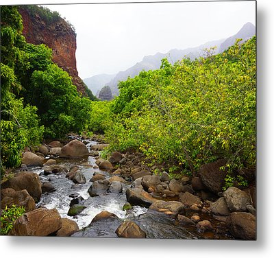Rainy Day In Canyon Metal Print
