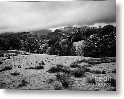 Rainy Day In The Lake District Near Loughrigg Cumbria England Uk Metal Print by Joe Fox