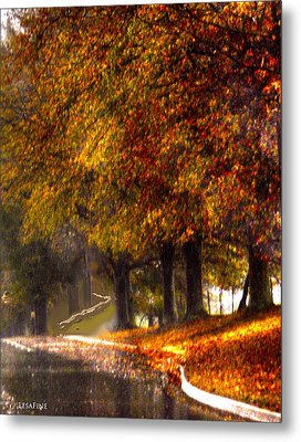 Metal Print featuring the photograph Rainy Day Path by Lesa Fine