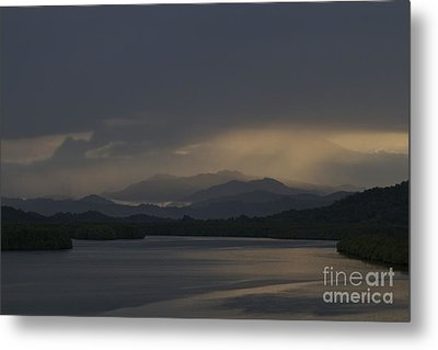 Metal Print featuring the photograph Rainy Morning by Gary Bridger