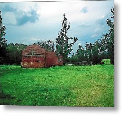 Rainy Pasture Metal Print by Terry Reynoldson