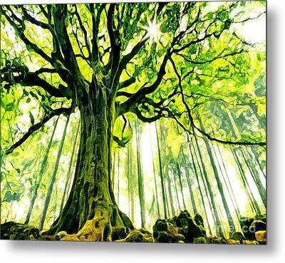 Raised By The Light Metal Print by Catherine Lott