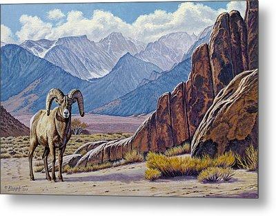 Ram-eastern Sierra Metal Print by Paul Krapf