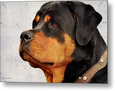 Ranch Dog On Watch Metal Print by Kae Cheatham