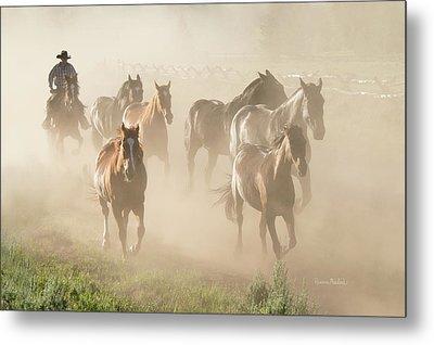 Ranch Horses Metal Print by Ramona Murdock