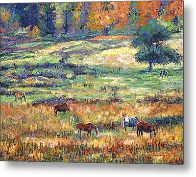 Range Country Metal Print by David Lloyd Glover