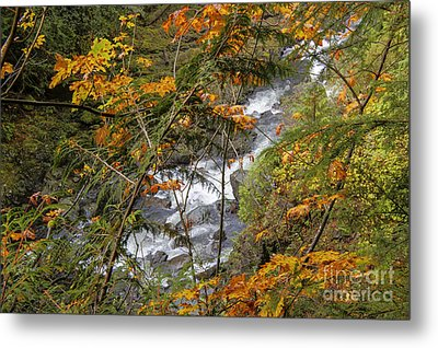 Rapids Through The Autumn Metal Print by Darleen Stry