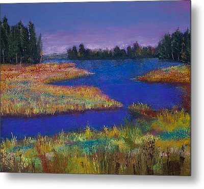 Raquette Lake Metal Print by David Patterson