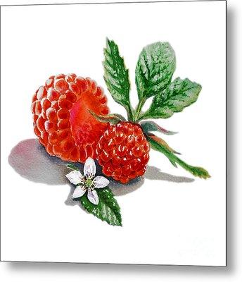 Raspberries  Metal Print by Irina Sztukowski
