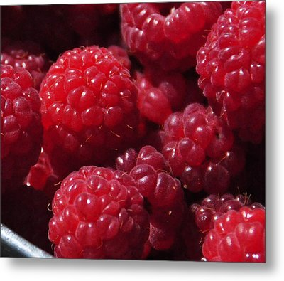 Raspberry Crave Metal Print by Elena Hasnas