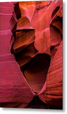 Rattlesnake Heart Metal Print by Chad Dutson