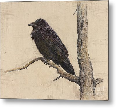 Raven Metal Print by Lori  McNee
