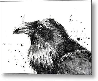 Raven Watercolor Portrait Metal Print by Olga Shvartsur