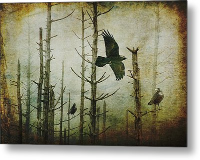 Ravens Of The Mist Artistic Expression Metal Print by Randall Nyhof