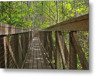 Ravine Gardens - Florida's Hidden Treasure Metal Print