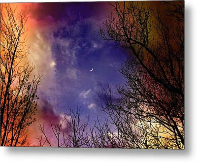 Reaching For The Moon 2 Metal Print by Susan Crossman Buscho