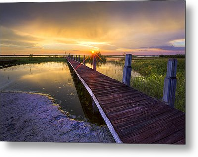 Reaching Into Sunset Metal Print by Debra and Dave Vanderlaan