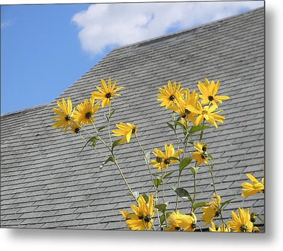 Reaching Metal Print by Jean Goodwin Brooks