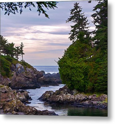 Reaching Out To The Ocean Metal Print