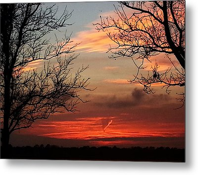 Reaching Out To You Metal Print by Joetta Beauford