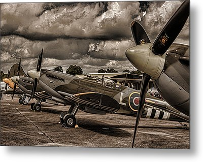 Ready For Action Metal Print by Martin Newman