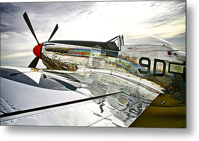 Ready To Fly Metal Print by Chas Burnam