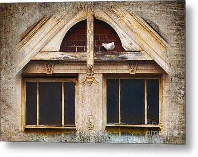 Metal Print featuring the photograph Ready To Nest by Cynthia Lagoudakis