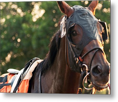 Ready To Race Metal Print