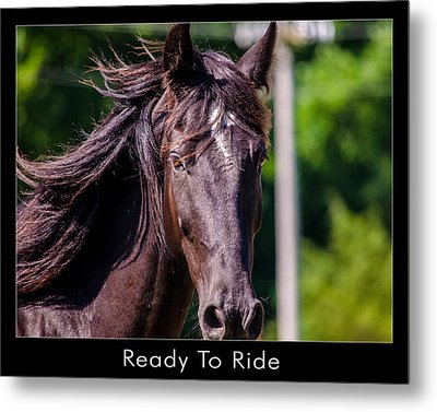 Ready To Ride Metal Print by Dan Holland